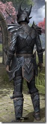 Xivkyn Iron - Male Back