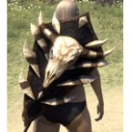 Barbaric Ash Shield