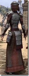 Battlemage Tribune Armor - Female Back
