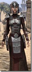 Battlemage Tribune Armor - Female Close Front