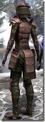 Centurion Dress Armor Dyed Back