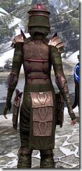 Centurion Dress Armor Dyed Close Back