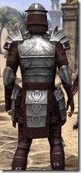 Centurion Dress Armor - Male Close Back