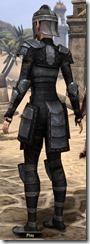 Centurion Field Armor - Female Back