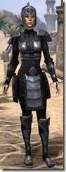 Centurion Field Armor - Female Front