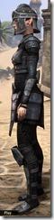 Centurion Field Armor - Female Side