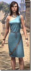 City Isle Tunic Dress - Female Close Front