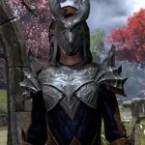Ebonheart Pact Shadowspun