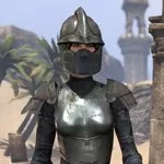 Lion Guard Knight