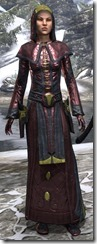 Mages Guild Formal Robes Dyed Front