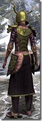 Nedic Duraki Armor Dyed Back