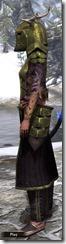 Nedic Duraki Armor Dyed Side