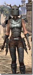 Nedic Perena Armor - Female Close Front
