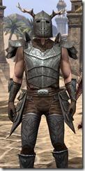 Nedic Perena Armor - Male Close Clode