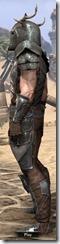 Nedic Perena Armor - Male Side
