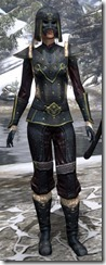 Orcisg Scout Armor Dyed Front