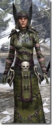 Winterborn Shaman's Costume Dyed Close Front