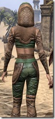 Wood Elf Vanguard - Female Close Back