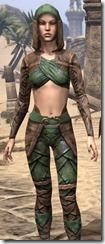 Wood Elf Vanguard - Female Close Front