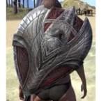 Aldmeri Dominion Ruby Ash Shield