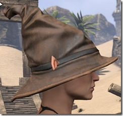 Clever Man Wizard Hat - Female Side