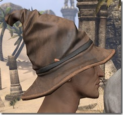 Clever Man Wizard Hat - Male Side