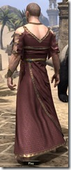 Cyrod Patrician Formal Gown - Male Back