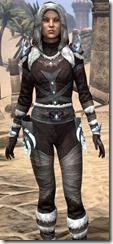 Stahlrim Frostcaster Shirt - Female Close Front
