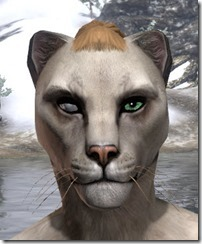 Blind Right Eye Khajiit Female