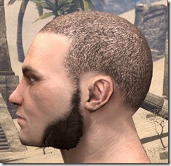Lowhung Sideburns Male 2