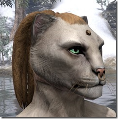 Nose Ring and Head Stud Khajiit Female 2