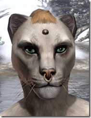 Nose Ring and Head Stud Khajiit Female