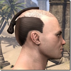 Shaved Warrior Topknot 2