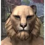 Tiger Mane