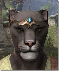 Azure Brow-to-Temple Circlet Khajiit Male Front