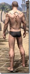 Cracked Mud Tattoos - Male Back