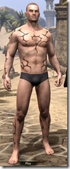 Cracked Mud Tattoos - Male Front
