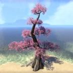 Tree, Tiered Pink Cherry
