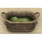 Basket of Lettuce