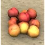 Peaches, Bunch