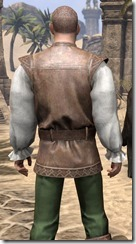 Soiree in Camlorn Evening Outfit - Male Close Back