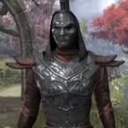 Knight Slayer