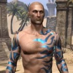 Buoyant Armiger Body Tattoos