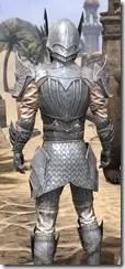 Ebonshadow Iron - Male Close Back