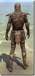 Phaer Mercenary - Male Back