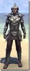 Steel Shrike - Male Front