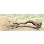 Branch, Sturdy Laurel