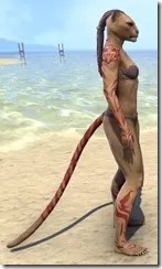 Dremora Kyn Body Tattoo - Khajiit Side