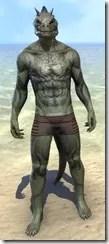 Inferno Ink Body Markings - Argonian Front
