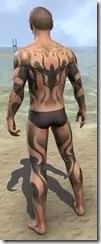 Inferno Ink Body Markings - Male Back